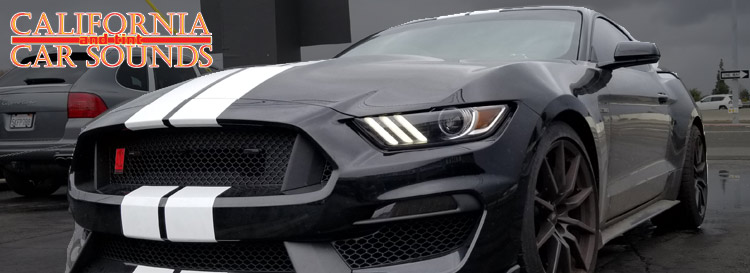 Ford Shelby Mustang Radar